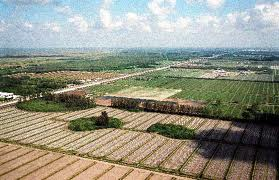 Palm Beach County's Agricultural Reserve