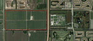 242 acres next to the Florida Turnpike