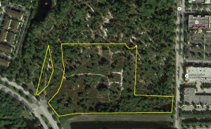The vacant land in Jupiter