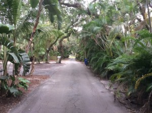 The Riverland Road area of Fort Laudedale (Photo credit: LifeinthePalms.com)