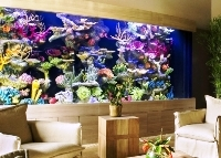 aquariums living color aquariums luxury homes. Black Bedroom Furniture Sets. Home Design Ideas