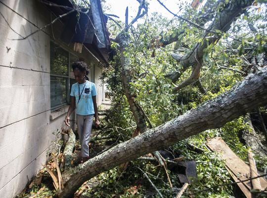 Cleaning up in Tallahassee after Hurricane Hermine. (Credit: Tallahassee Democrat)