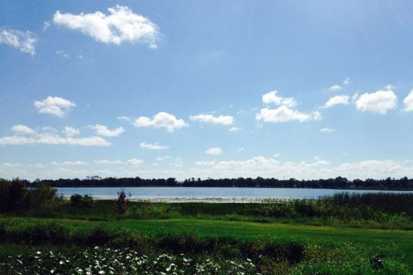 Lake Cecile in Kissimmee
