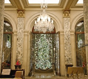 THe Plaza Hotel's 'Gatsby' tree