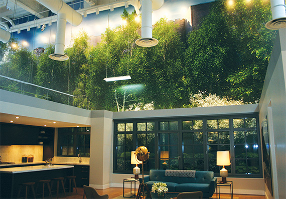 The interior of the 500 West 21st Street showroom has a  tree-painted mural designed to simulate the plantings that  will provide privacy to the building once it is finished.