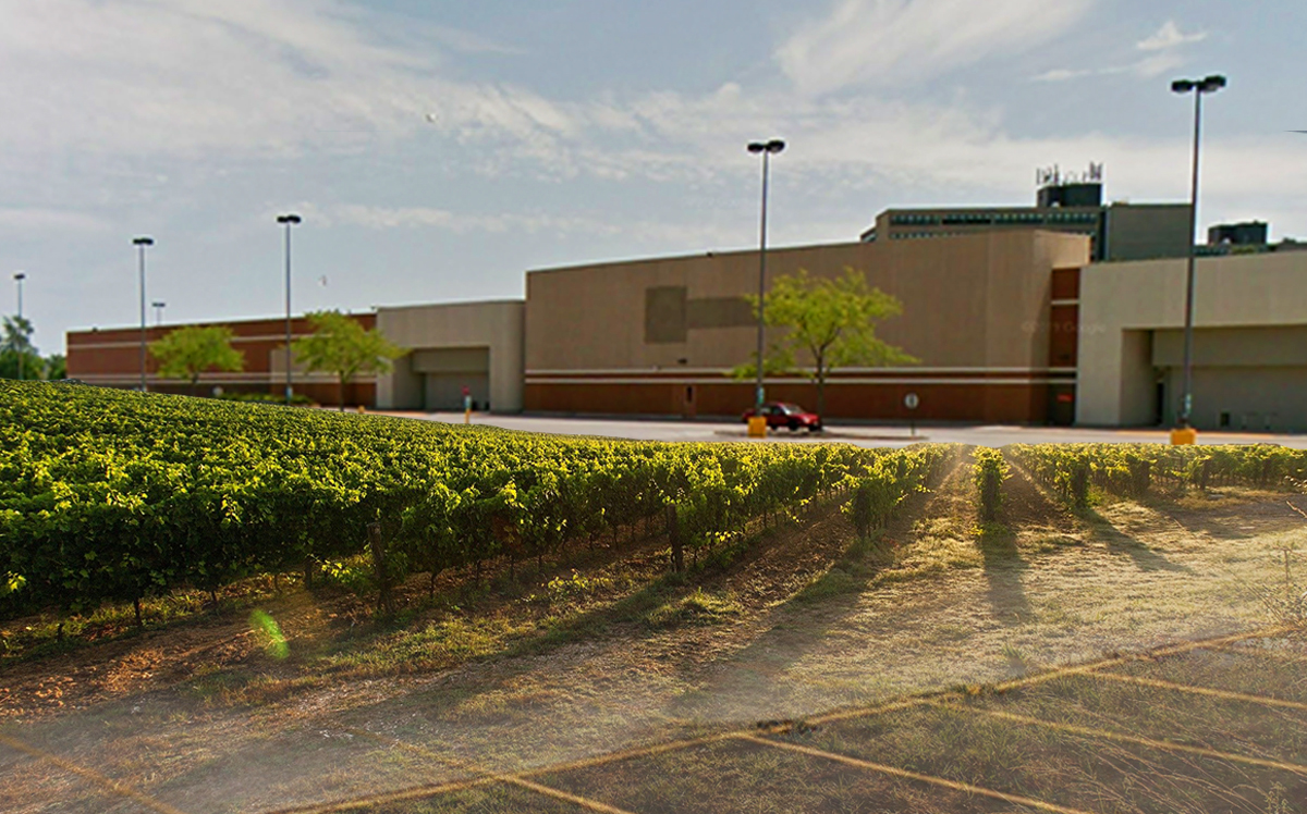 The former Target in Calumet City will be converted into a working farm (Google Maps)