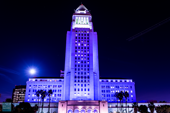 The City of Los Angeles paid tribute to Prince by lighting up City Hall in purple on the night of his passing.