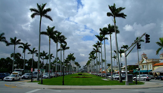 royal-poinciana-way