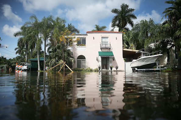 A Flooded Street In South Florida Credit Getty Images