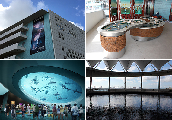 New Science Museum Miami >> Frost Museum Of Science Opening Museum Park Miami
