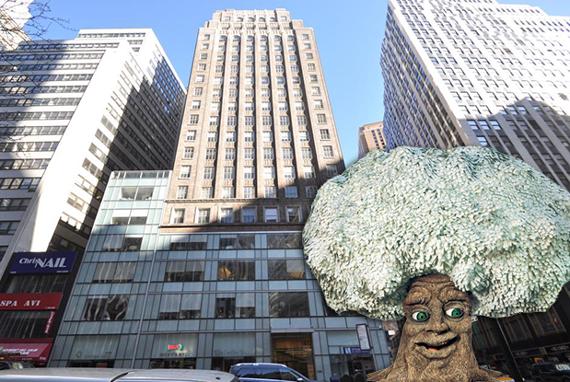1412-Tree-Oak