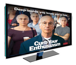 CURB-YOUR-ENTHUSIASM-TV