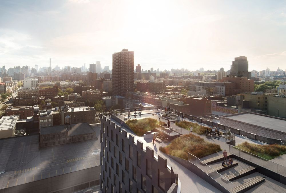 145 East 125th Street rooftop (credit: Blumenfeld Development Group)