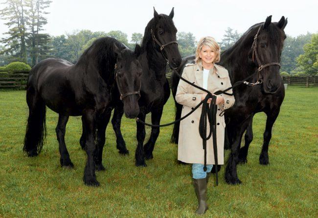 Martha Stewart Picks A New Path