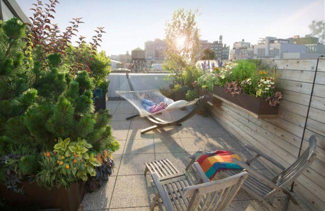Landscape designer Todd Haiman created a 1,100-square-foot oasis on a private terrace in Noho.