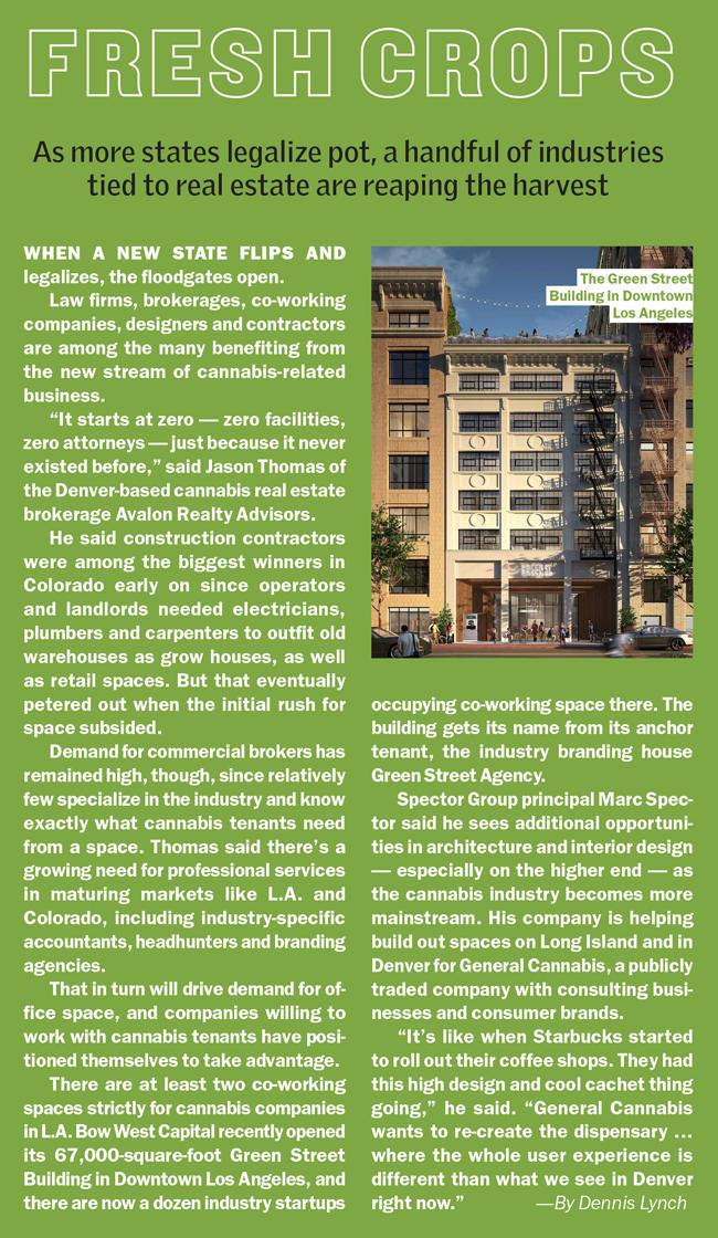 Pot and Real Estate | Marijuana Retail New York