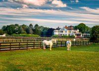 The Martha Clara Vineyards property in Jamesport was sold for $15 million by Corcoran's Sheri Winter Parker last year