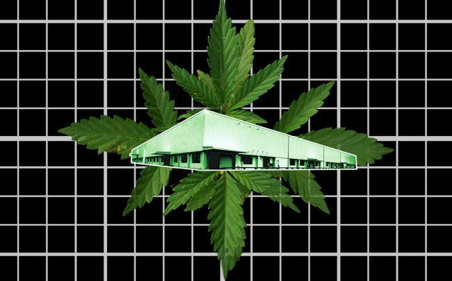 Real estate in states where cannabis use is legal is in high demand compared to states where use is illegal. (Credit: Pixabay)