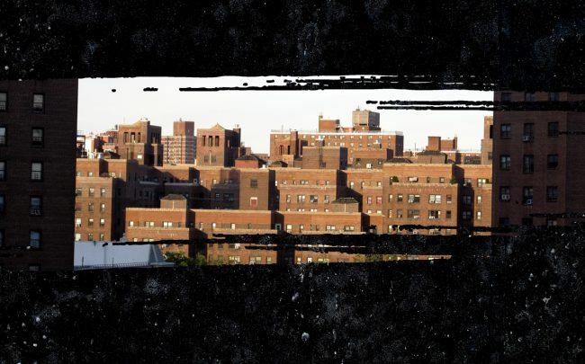 NYCHA housing (Credit: Wikipedia)