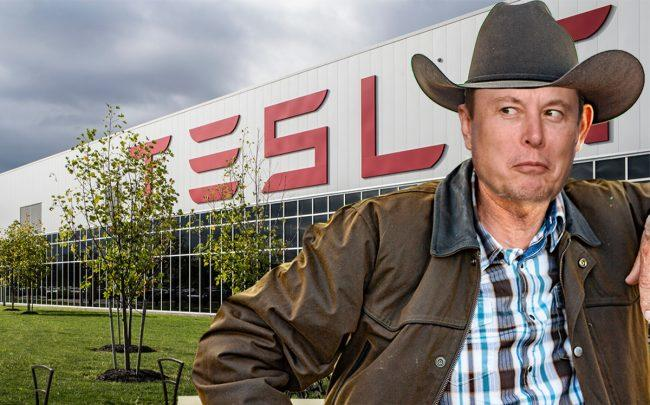 Elon Musk seems to want to build a Tesla factory in Texas (Credit: Getty Images, iStock)