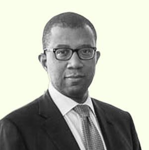 New York City Corporation Counsel's James Johnson